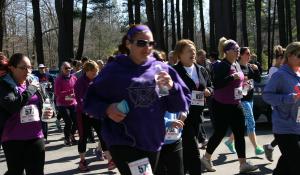 Purple Run 2016-2